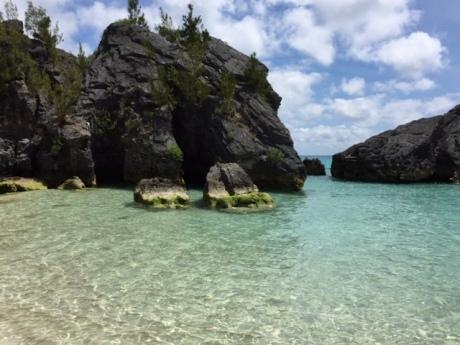 Blog Photo - SOTH Kim Jobson's Cove
