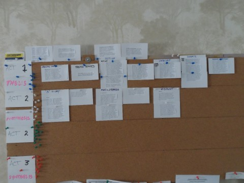 Blog Photo - SOTH Rons Storyboard for plays