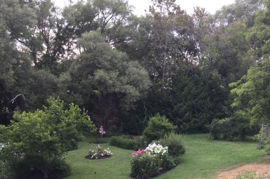 Blog Photo - SOTH Felicity Garden