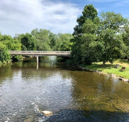 Blog Photo - FOTA Reva countryside and river