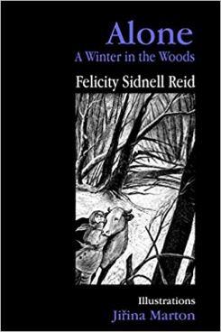 Blog Photo - FOTA Felicity book Cover - Alone