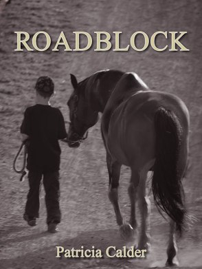 Blog Photo - FOTA Patricia Calder - ROADBLOCK Book Cover